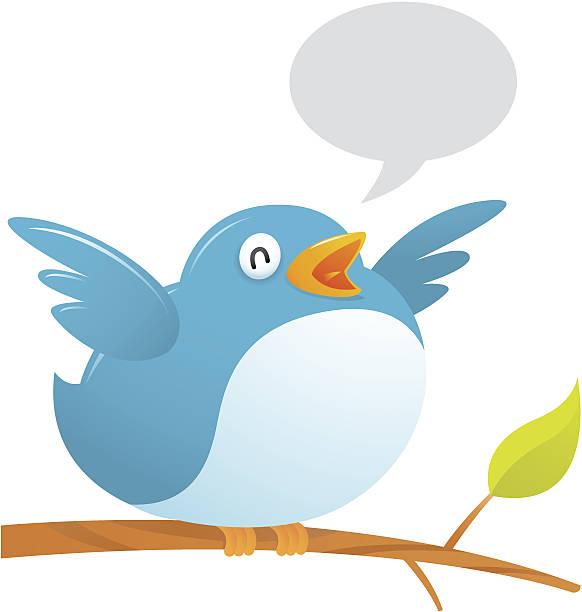 fat twitter bird - twitter 幅插畫檔、美工圖案、卡通及圖標
