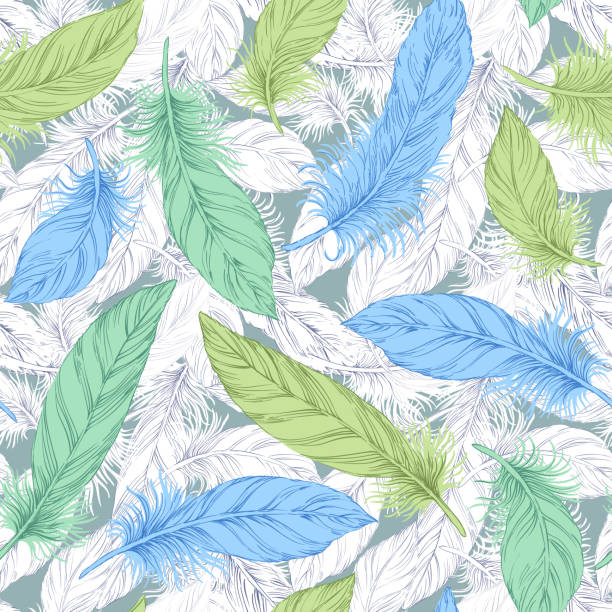 Feather background vector art illustration