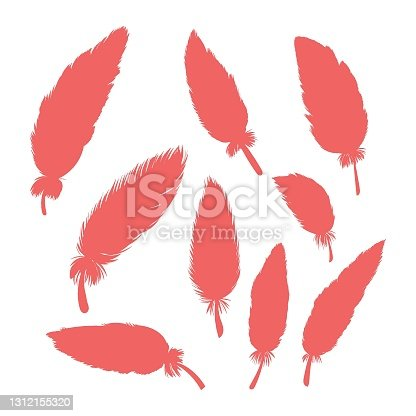 istock Feather collection. Realistic quill feathers, elegant silhouette, simple editable colour. Vector illustration. 1312155320