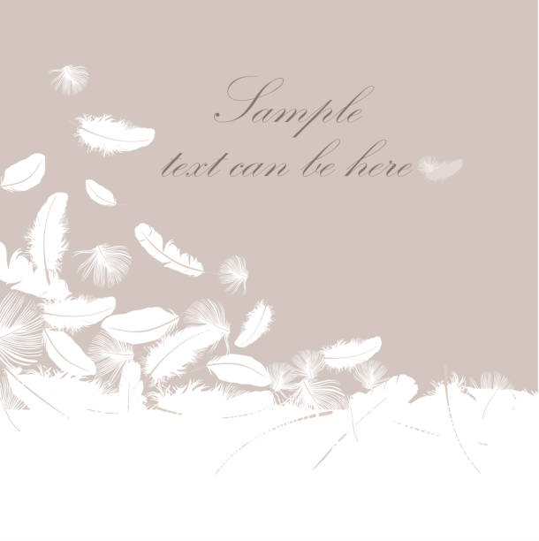 Feather decorative wallpaper Feather background with copy space for text bristle animal part stock illustrations