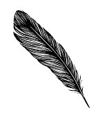 istock Feather Drawing 1180979096