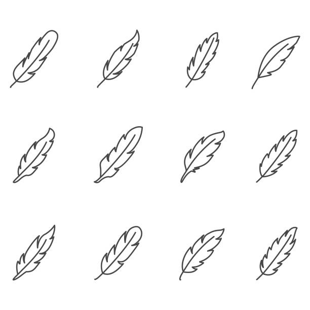 feather icon set - pióro przyrząd do pisania stock illustrations