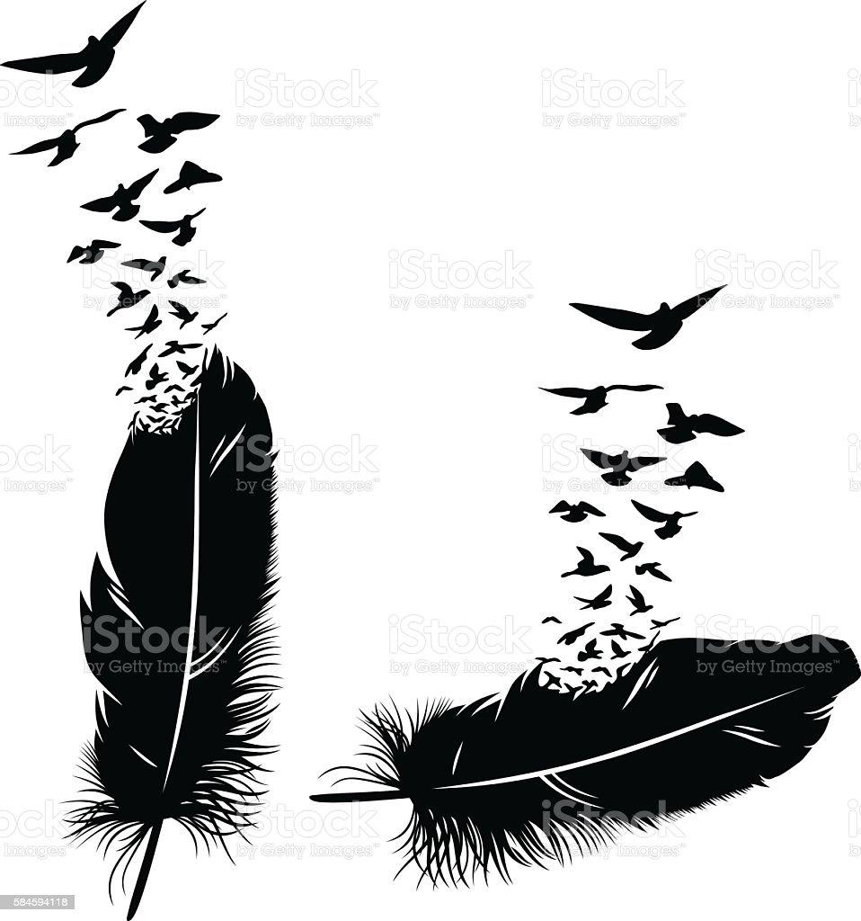 Feder ein Vogel  – Vektorgrafik