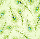 Feather Patterns vector illustration.