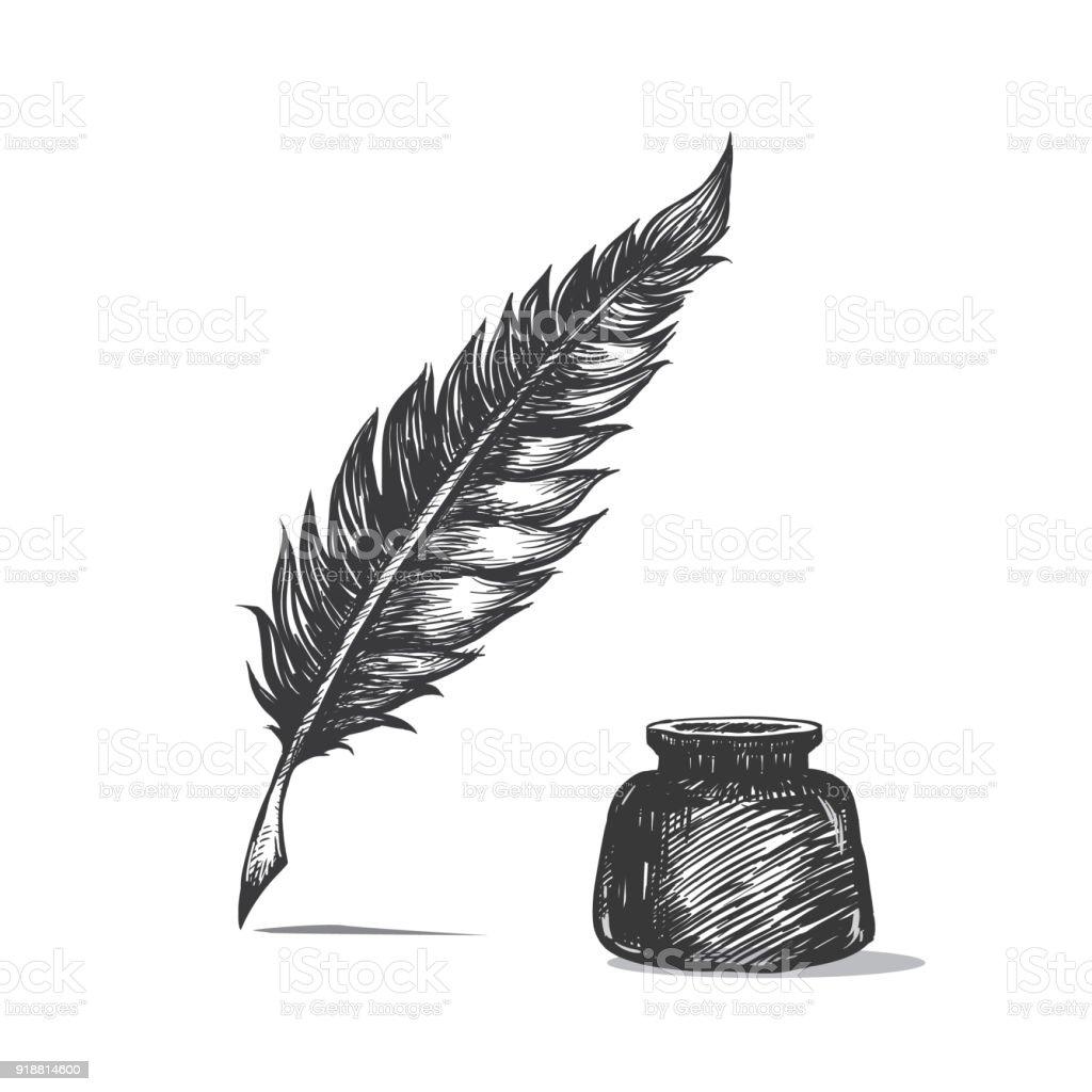 """Résultat de recherche d'images pour """"plume dessin"""""""