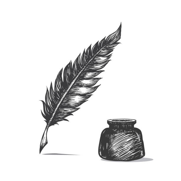 ilustrações de stock, clip art, desenhos animados e ícones de feather pen and inkwell. drawing of ancient stationery on white background in doodle style. - tinteiro