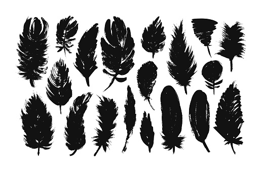 Feather silhouettes collection. Vector hand drawn elements.