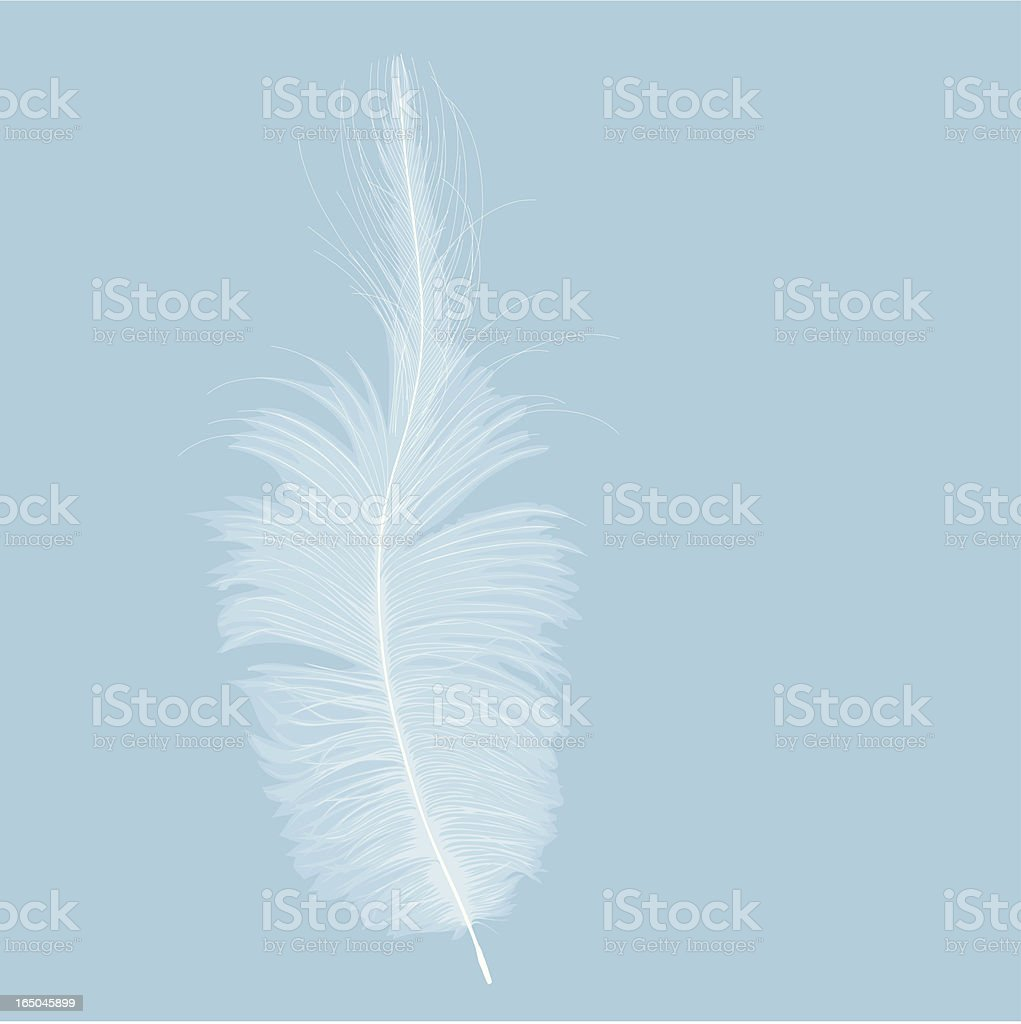 Feather royalty-free stock vector art