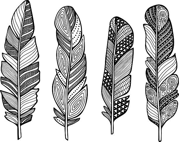 Feather vector set Feather vector set. Hand drawn doodle feathers. bristle animal part stock illustrations