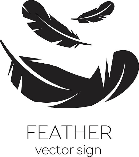 Feather, Vector, Silhouette, Icon, Logo Feather, Vector, Silhouette, Icon, Logo feather stock illustrations