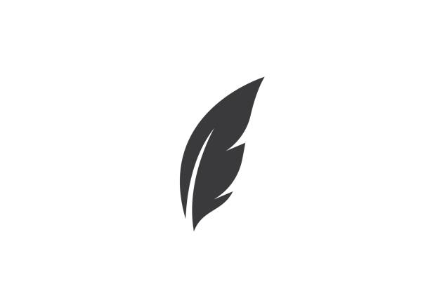 feather   vector feather   vector icon template feather stock illustrations