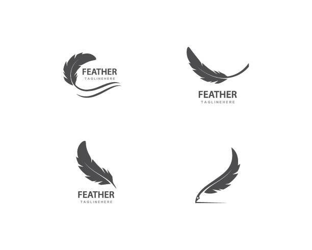illustrazioni stock, clip art, cartoni animati e icone di tendenza di feather vector - piume colorate