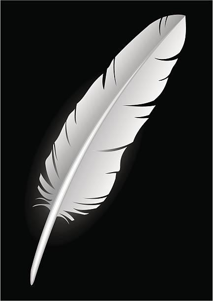Feather -- white on black (vector)  bristle animal part stock illustrations