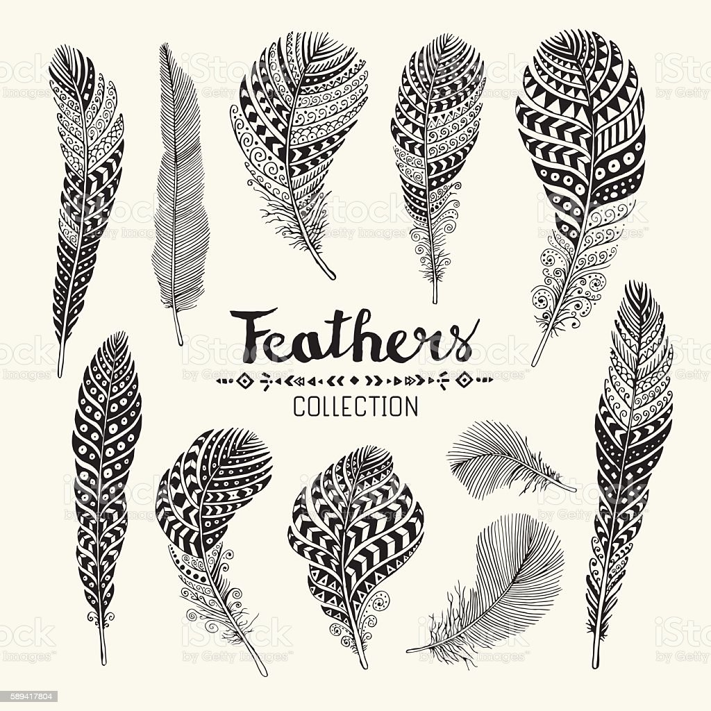 Feathers collection vector art illustration