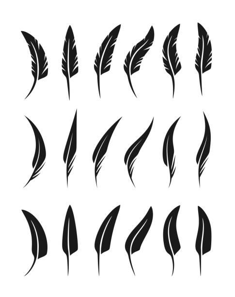 stockillustraties, clipart, cartoons en iconen met feathers collectie. vector geïsoleerde silhouetten. - stekels