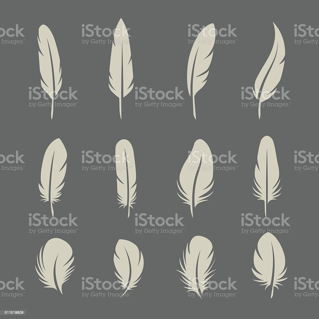 Feathers retro set vector art illustration