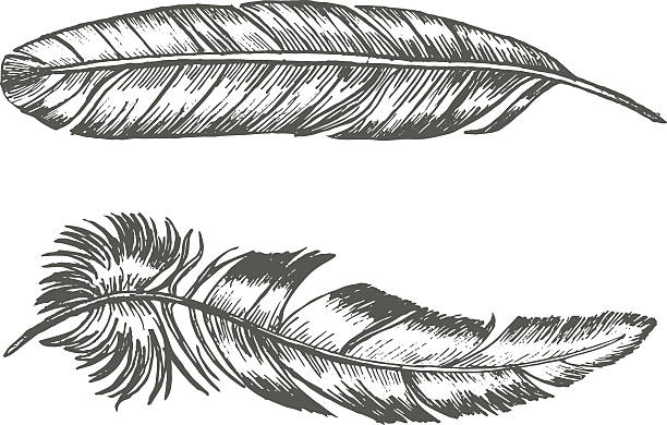 feathers set hand draw sketch. trendy tattoo template. vector - 羽のタトゥー点のイラスト素材/クリップアート素材/マンガ素材/アイコン素材