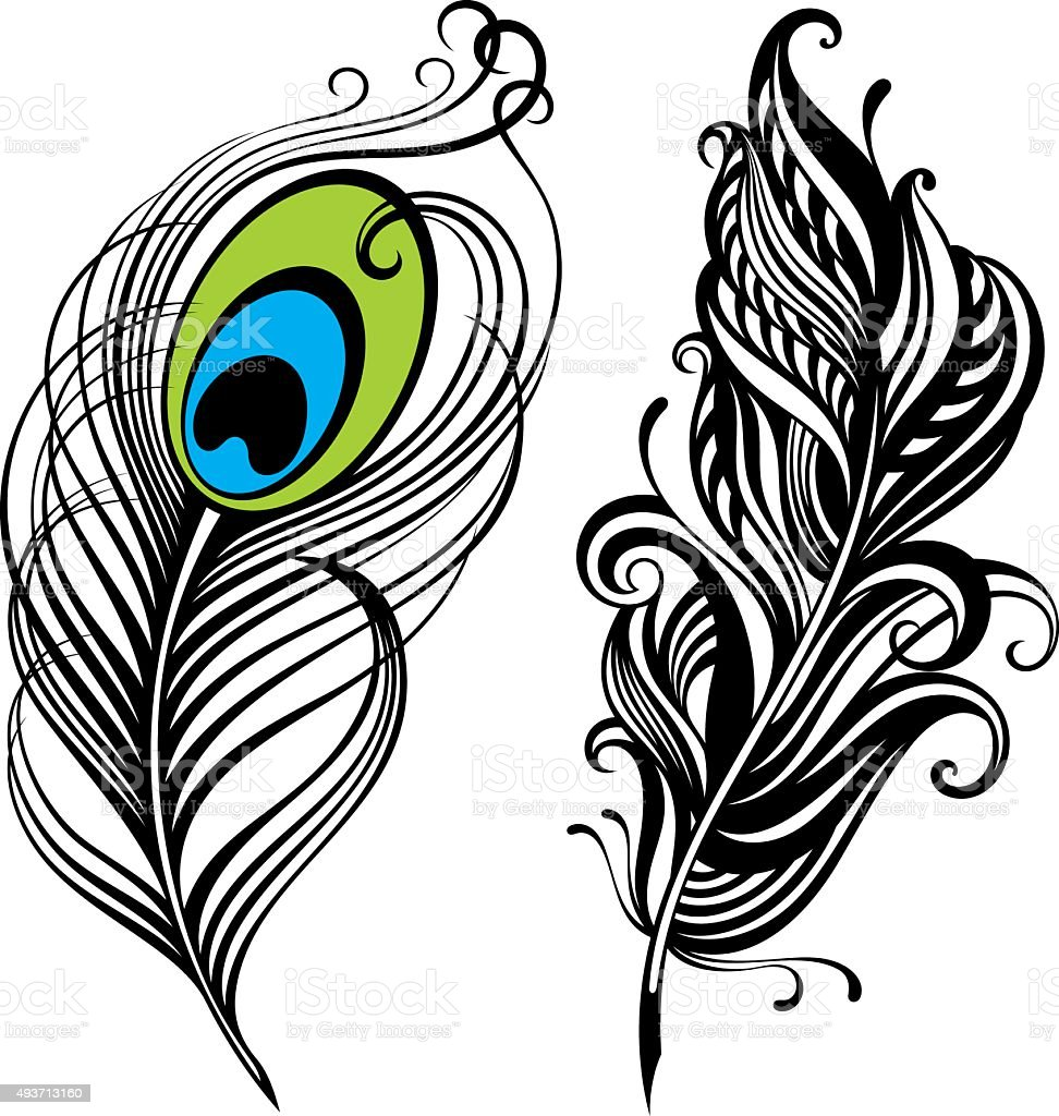 royalty free peacock feather clip art vector images illustrations rh istockphoto com peacock feather clip art free flute with peacock feather clip art