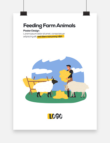 Feeding Farm Animals Concept Flat Design for Posters, Covers and Banners. Modern Flat Design Vector Illustration.
