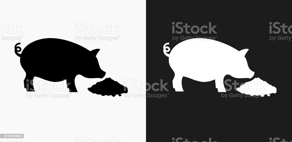 Feeding Pig Icon on Black and White Vector Backgrounds vector art illustration