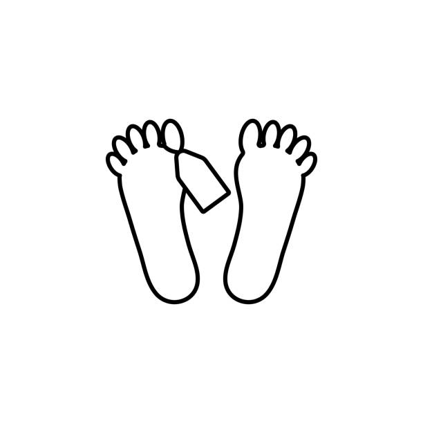 feet of corpse icon. element of crime and punishment icon for mobile concept and web apps. thin line feet of corpse icon can be used for web and mobile - autopsy stock illustrations, clip art, cartoons, & icons