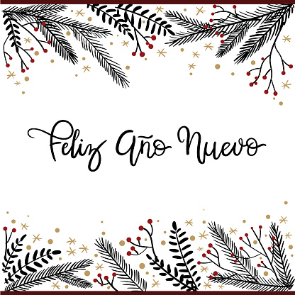 Feliz Ano Nuevo Hand Lettering Greeting Card.
