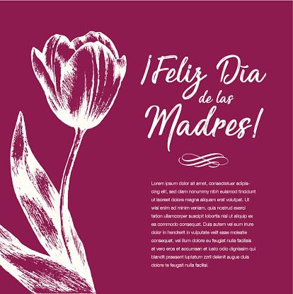 Feliz Día de las Madres (Happy Mother's Day in Spanish) Tulip Flowers Greeting Card – Copy Space
