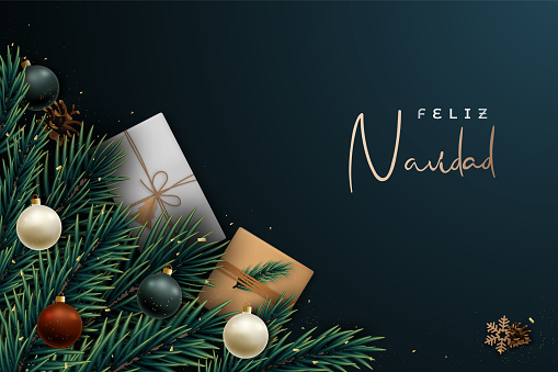 Feliz Navidad festive banner, Merry Christmas on spanish. Vector template with realistic fir tree branches, shiny baubles, glitter and gift boxes.
