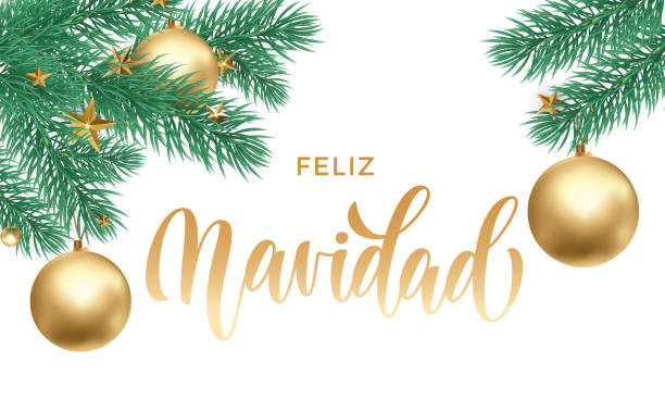 Feliz Navidad Spanish Merry Christmas holiday golden hand drawn calligraphy text for greeting card of Christmas fir decoration star ornament. Vector white background design template for winter season Feliz Navidad Spanish Merry Christmas holiday golden hand drawn calligraphy text for greeting card of Christmas fir decoration star ornament. Vector white background design template for winter season navidad stock illustrations