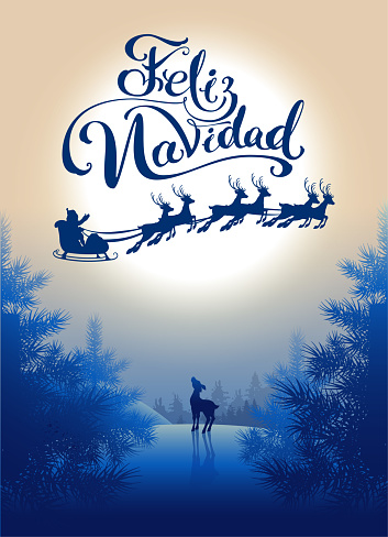Feliz navidad translation from Spanish Merry Christmas. Lettering calligraphy text for greeting card. Silhouette Santa sleigh of reindeer in night sky