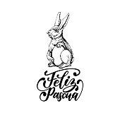 Feliz Pascua translated from Spanish handwritten phrase Happy Easter in vector.Drawn illustration of paschal egg, Bunny,