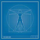 Female Body Blueprint