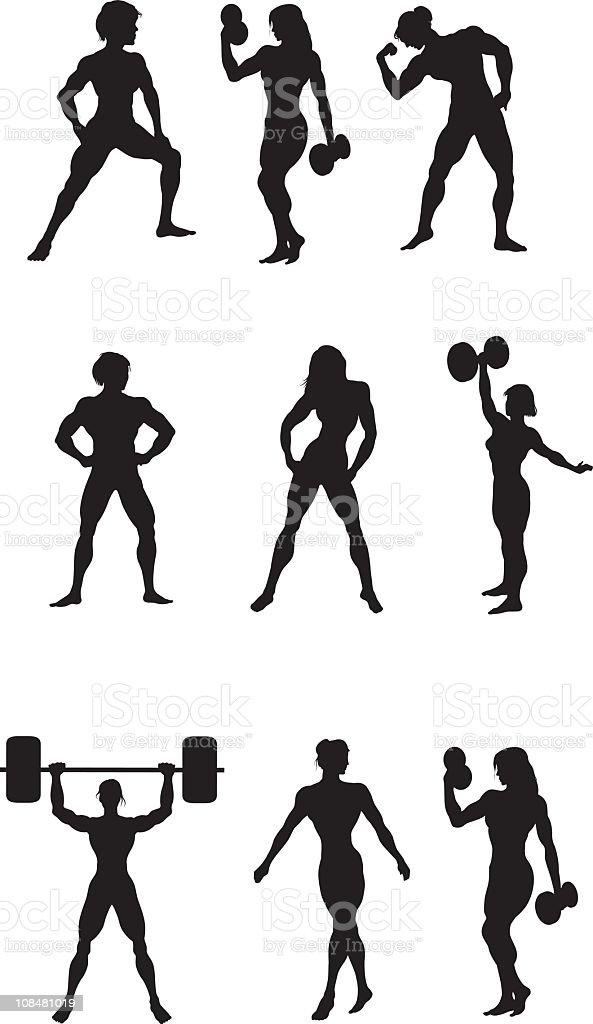 Female Body Builders vector art illustration