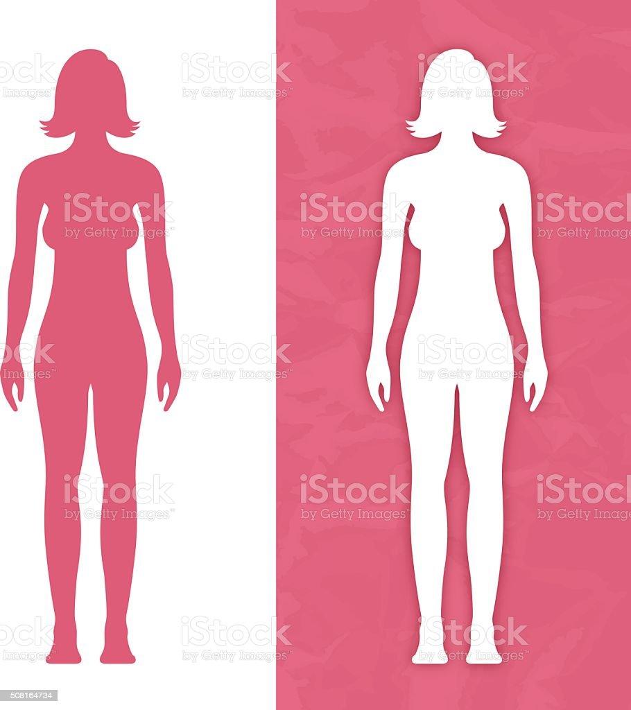 Female Body Form vector art illustration