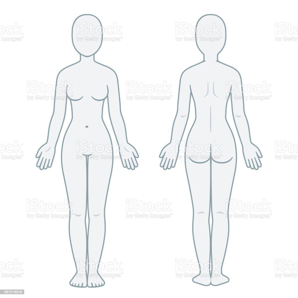 Ilustración de Parte Trasera Y Delantera Del Cuerpo De La Mujer y ...