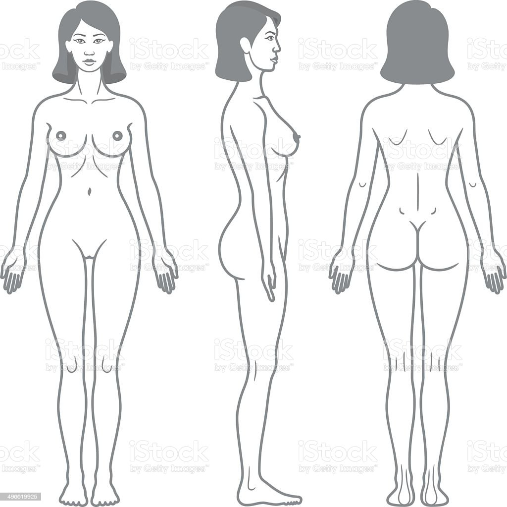 Female Body Front Side And Back View Stock Vector Art & More Images ...