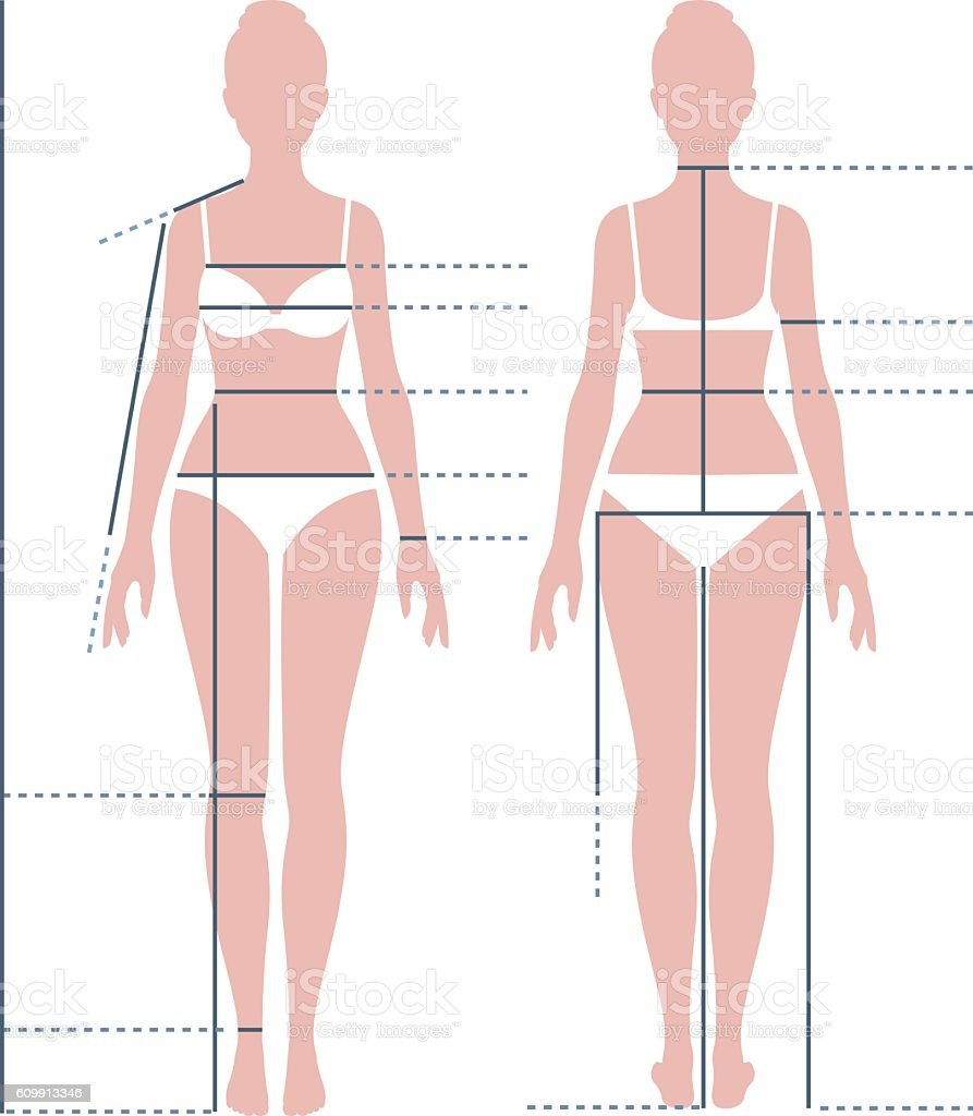 Female body in full length for measuring the size vector art illustration