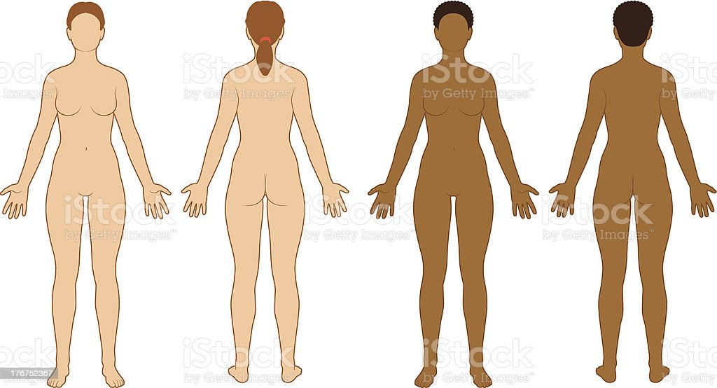 Female Body Outline royalty-free female body outline stock vector art & more images of adult
