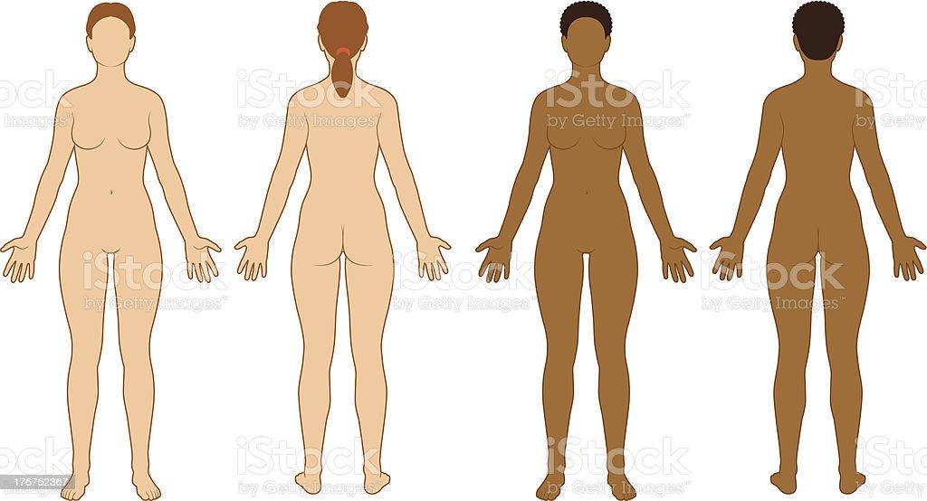 Female Body Outline vector art illustration
