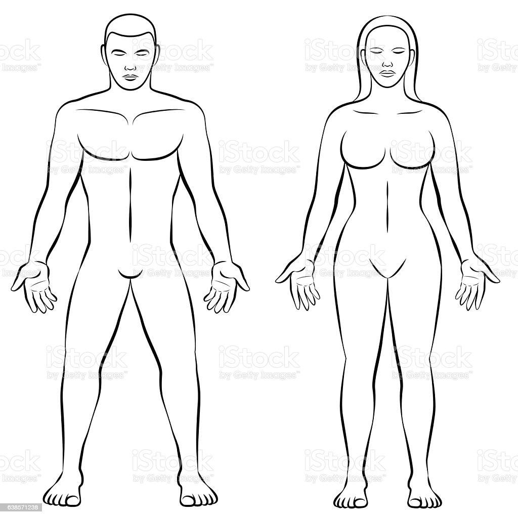 female body image in media essay