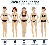 Female body shape set