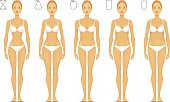 Types of Female Body - Vector Illustration.