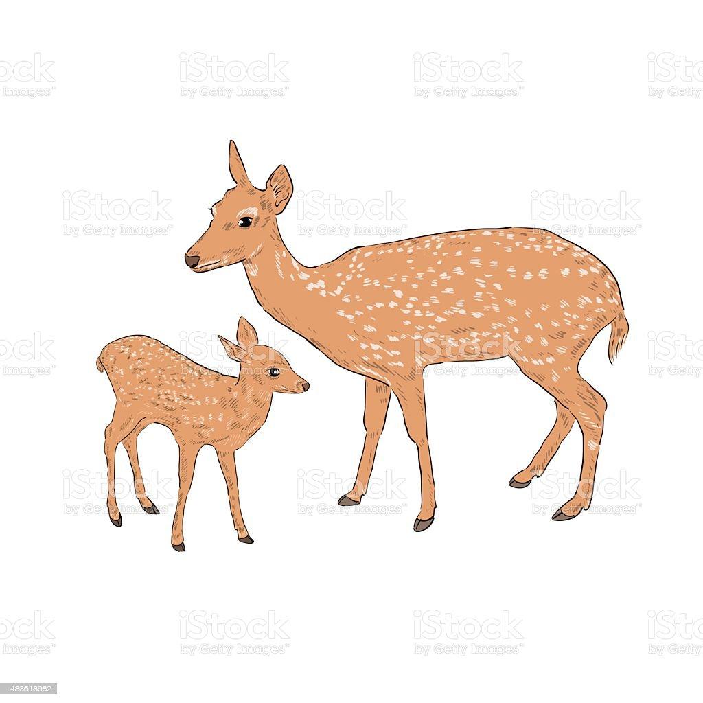 Femme avec un cerf fauve - Illustration vectorielle
