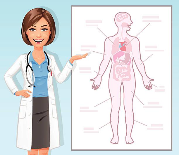 Female Doctor Explaining The Human Body vector art illustration