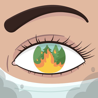Female eye with forest fire in a close up view.