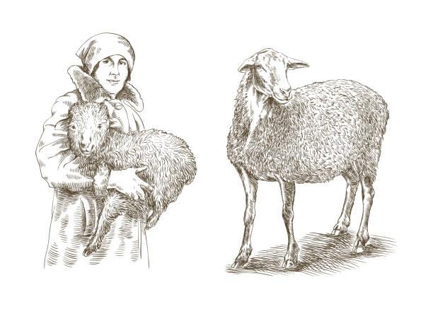 Femme tenant un agneau fermier dans ses mains - Illustration vectorielle