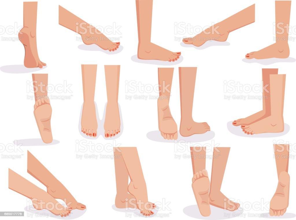 Female feet vector art illustration