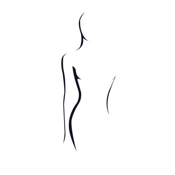 Female figure Silhouette of a woman. Vector illustration abstract silhouettes stock illustrations