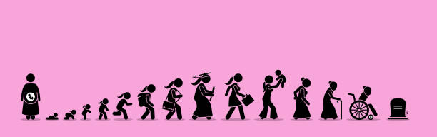 Female life cycle and aging process. vector art illustration