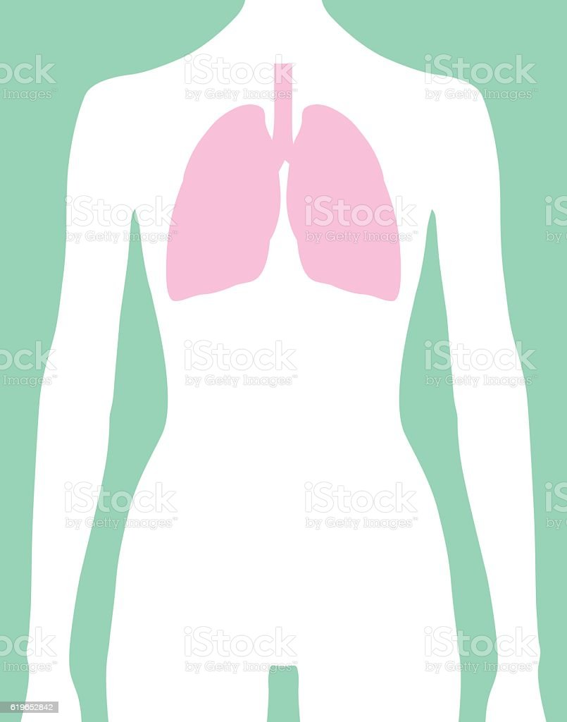 Female Lungs Body Icon vector art illustration